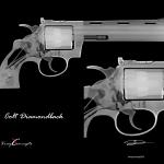 8×10 Colt Diamondback Option B Neg
