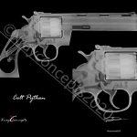 8×10 Colt Python Option B Neg